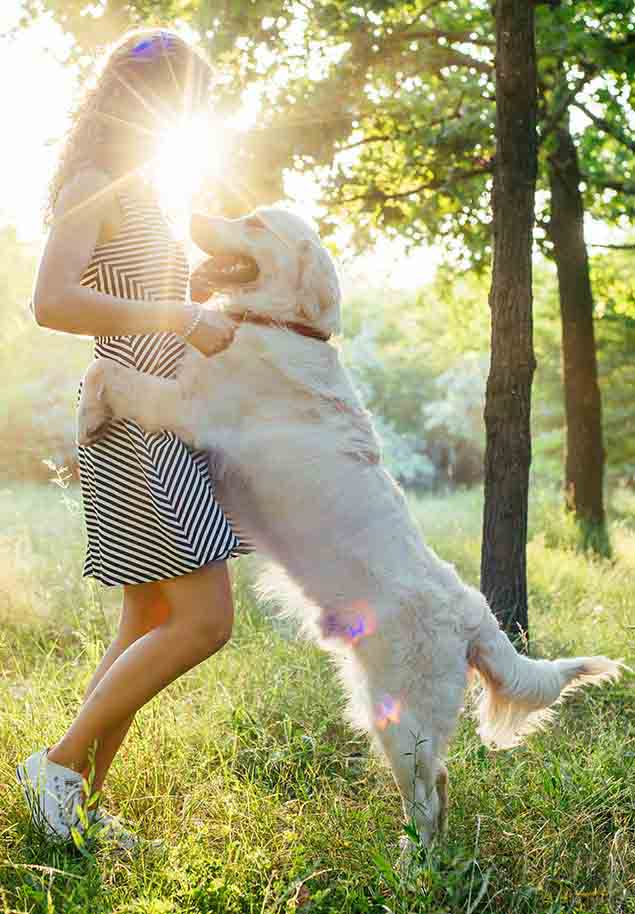 Girl playing with her white labrador